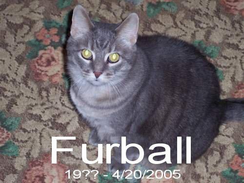 04/21/2005