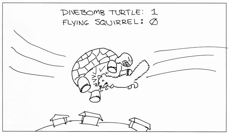 Divebomb Turtle