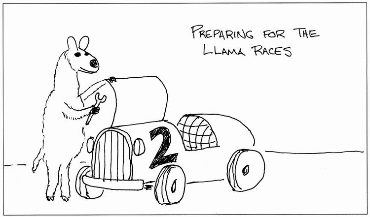 Llama Race 2010