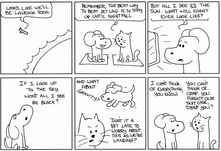Hero Dog Landing