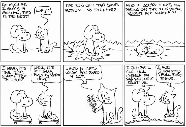 Hero Dog Sunbeam